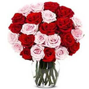 20 Pink And Red Roses Bouquet